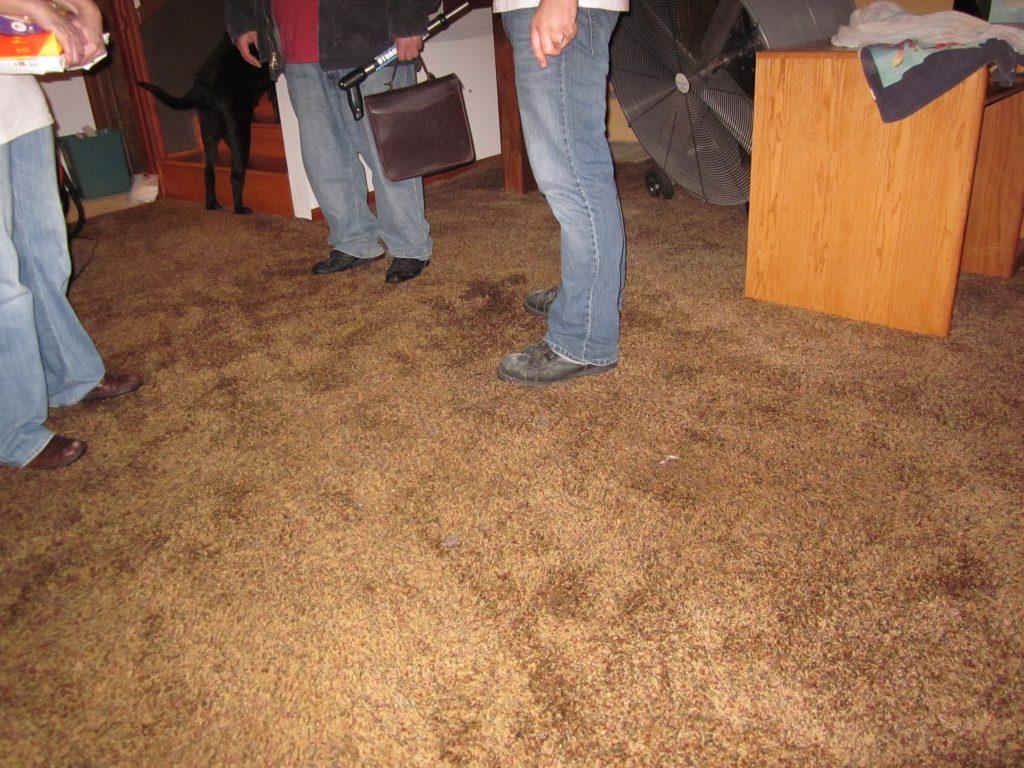 Sewage Damage Restoration in Fairview, Texas (7828)