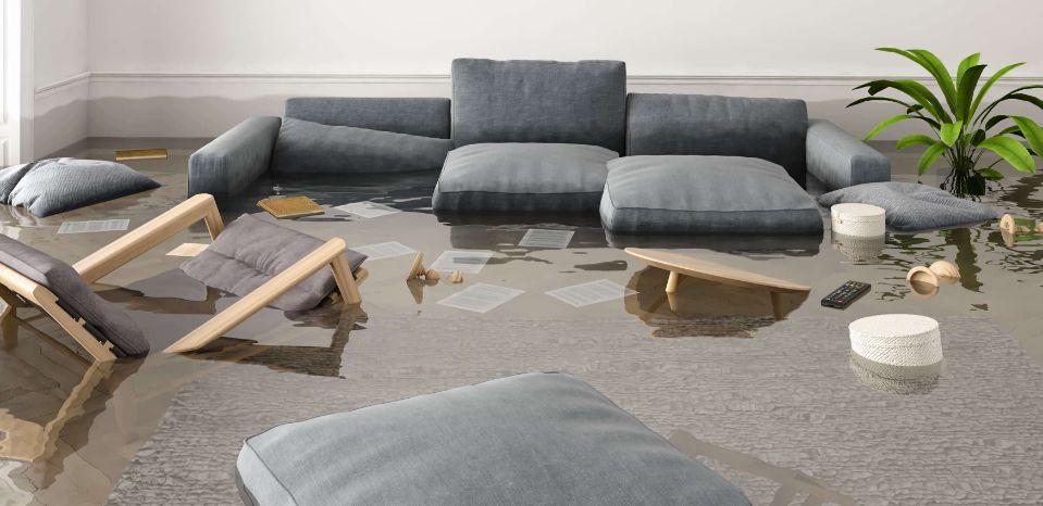 Water Damage Removal in Denton, Texas (1136)