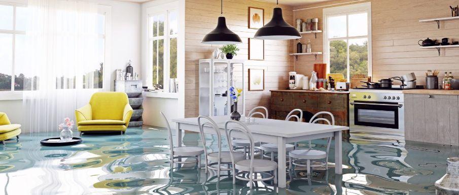 Water Damage Restoration in Alma, Texas (1029)